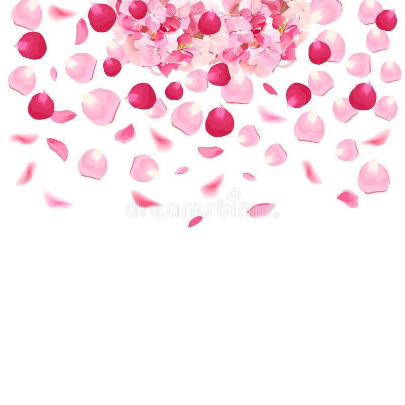 O rosa e as pétalas cor-de-rosa e a hortênsia românticas vermelhas vector o cartão ilustração royalty free