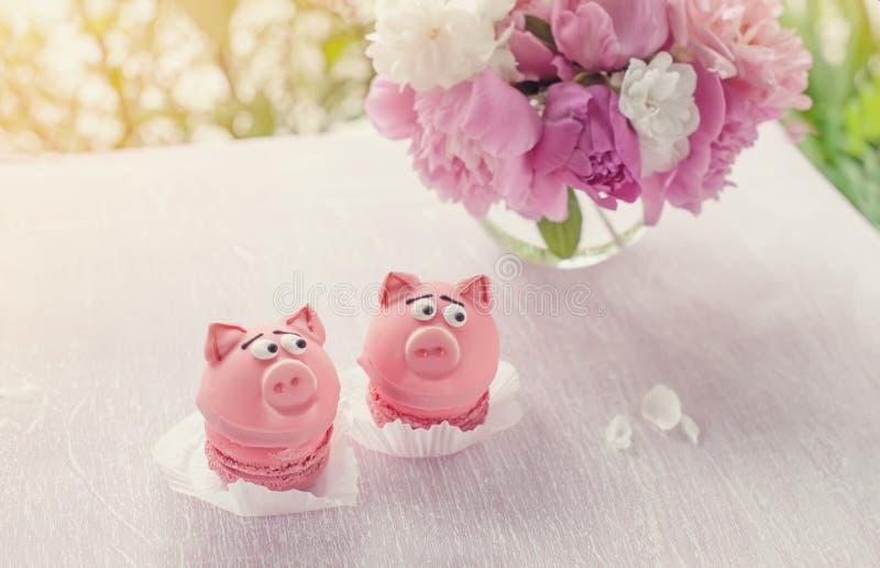O rosa endurece na forma de piggies pequenos com um ramalhete das peônias para o feriado Copie o espaço foto de stock