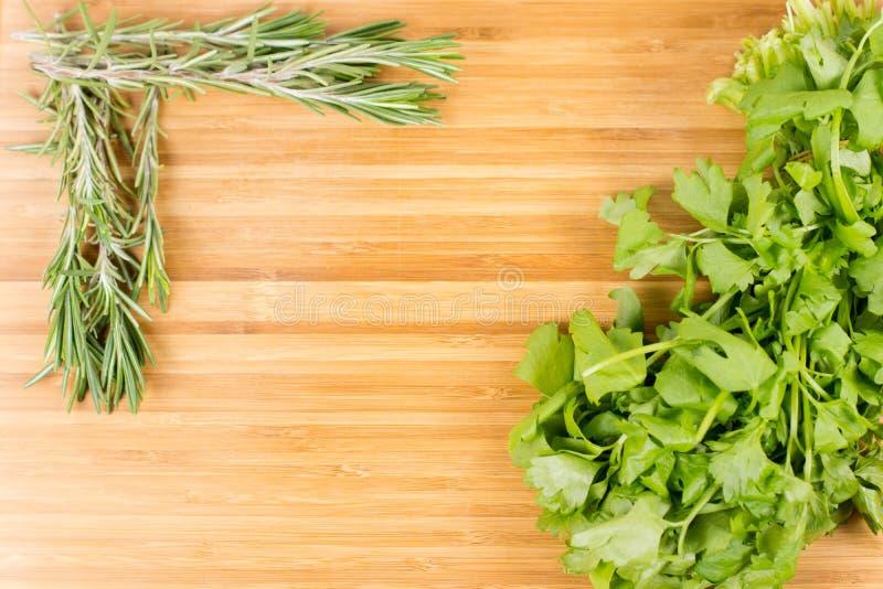 Rosemary fresco e salsa lisa da folha imagens de stock royalty free