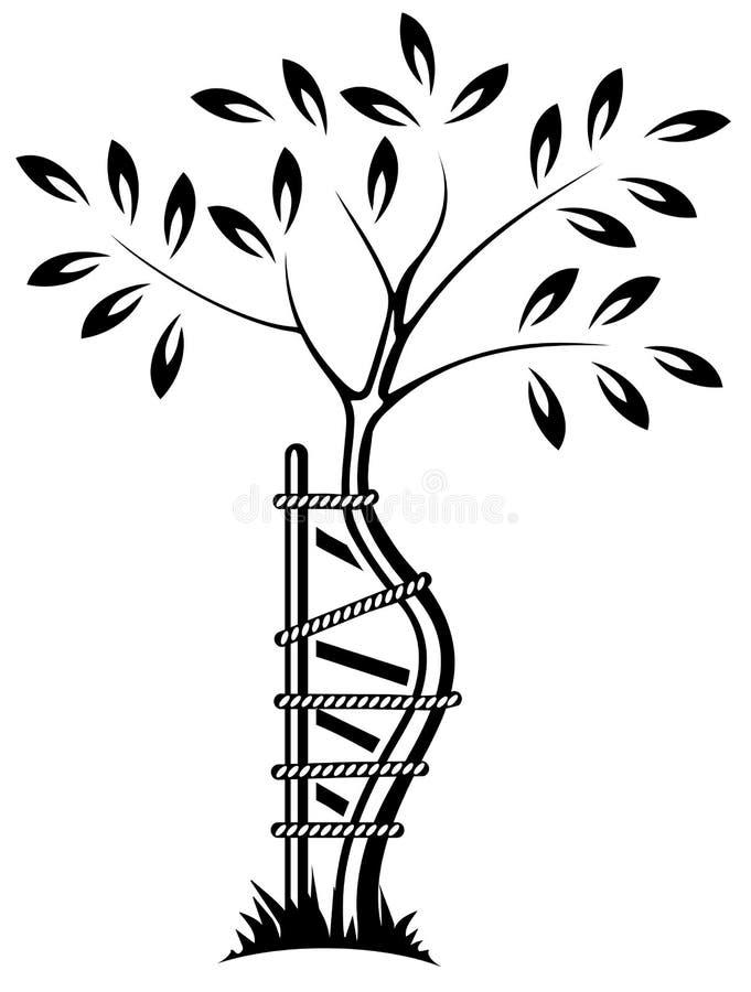 O símbolo do orthopedics foto de stock