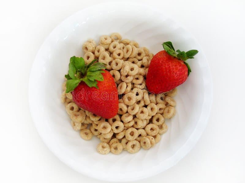o s草莓 免版税库存照片