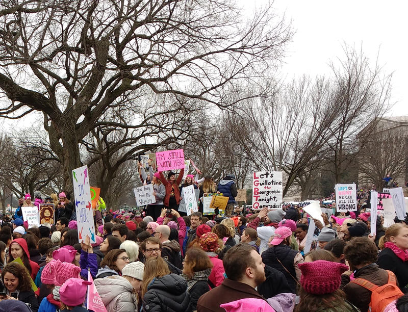 O ` s março das mulheres em Washington, ` m de I ainda com ela, protestadores reagrupa contra o presidente Donald Trump, Washingt imagens de stock royalty free