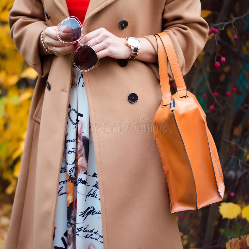 O saco na fêmea entrega o close up Óculos de sol na mulher das mãos Acessórios das senhoras da forma, braceletes, monóculos imagem de stock