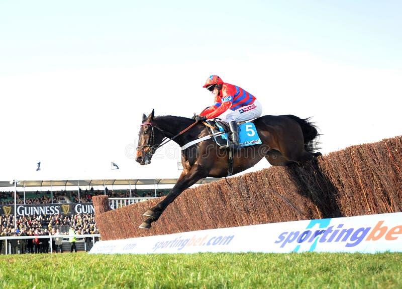 Download Corrida de cavalos foto editorial. Imagem de cavalo, apostar - 29832361