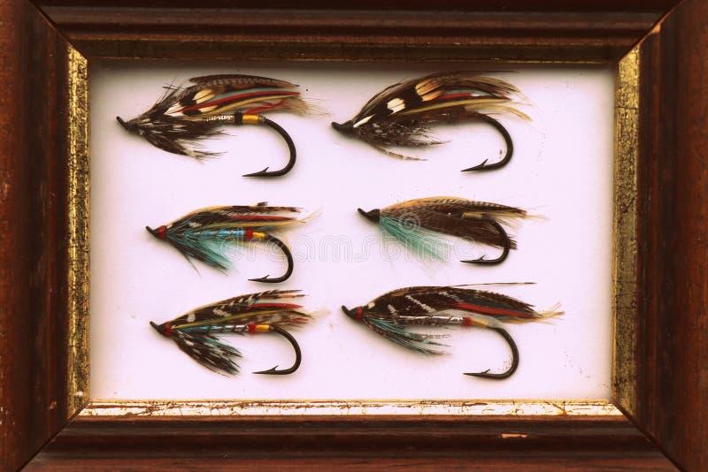 O salmão clássico do vintage voa a imagem da pesca com mosca imagem de stock royalty free