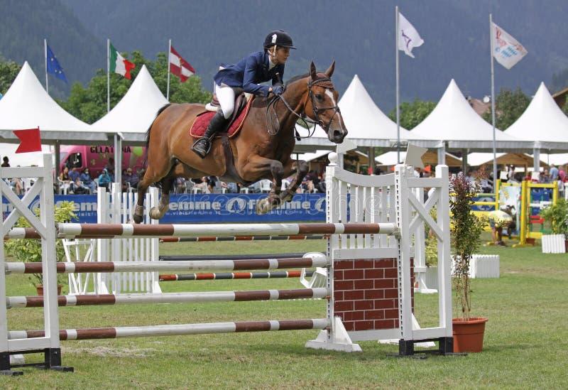 O salto do cavalo foto de stock royalty free