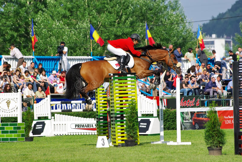 O salto do cavalo fotos de stock