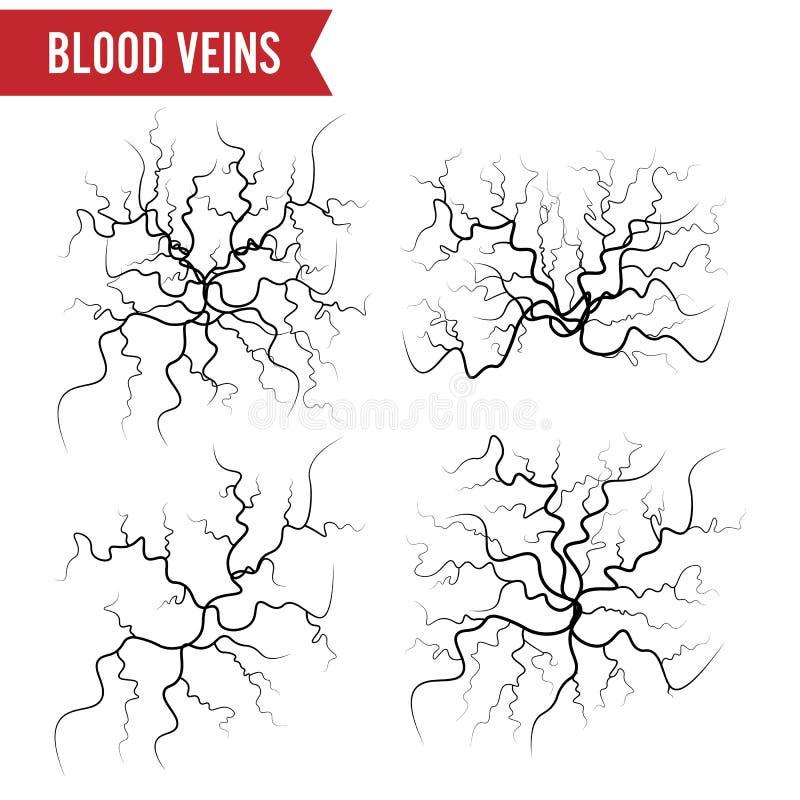 O sangue humano veia o vetor Artérias do sangue isoladas no branco Grupo de veias do sangue A imagem do vermelho da saúde veia a  ilustração stock