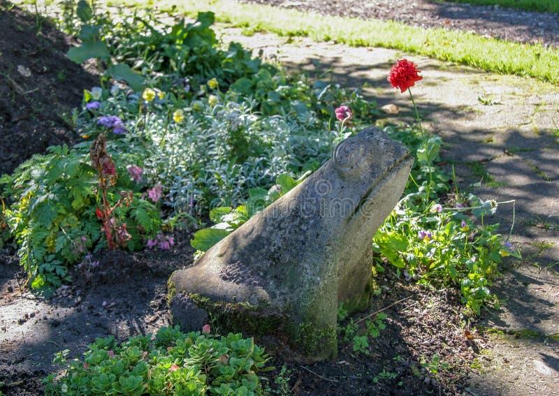 O sapo de pedra senta-se no jardim entre flores e outras plantas imagem de stock royalty free