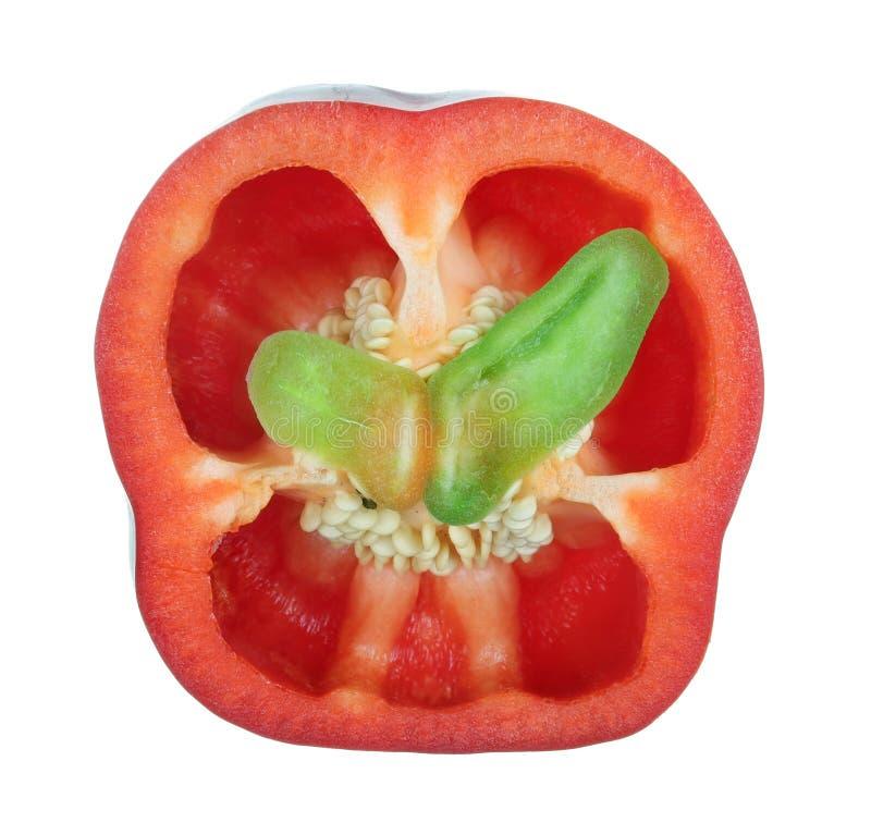 O seção transversal da pimenta vermelha doce da paprika com batterfly as asas verdes dentro do macro isolado imagens de stock
