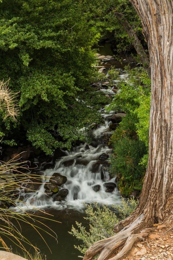 O Sedona bonito e diverso o Arizona fotografia de stock royalty free