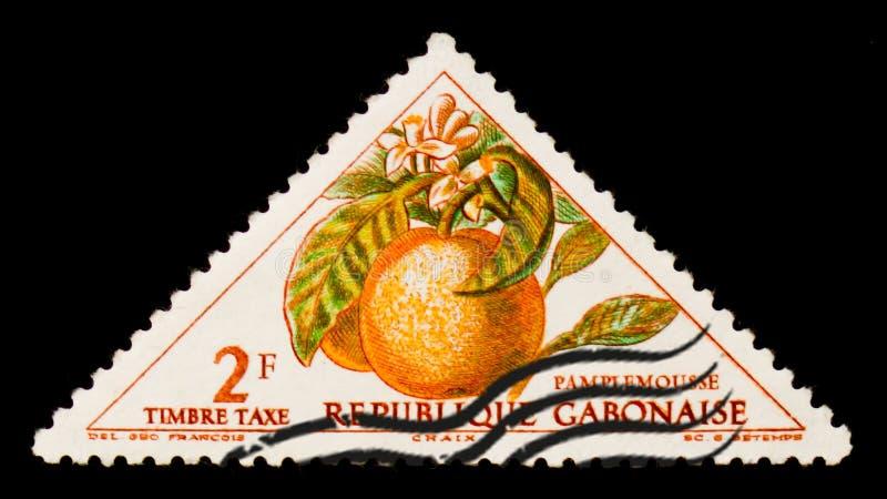 O selo postal de Gabonese Republic mostra a toranja, citrino paradisi, cerca de 1962 fotografia de stock