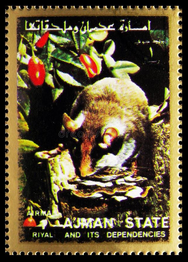 O selo postal impresso em Ajman (Emirados Árabes Unidos) mostra Animal, Mammals, large format serie, por volta de 1973 imagens de stock