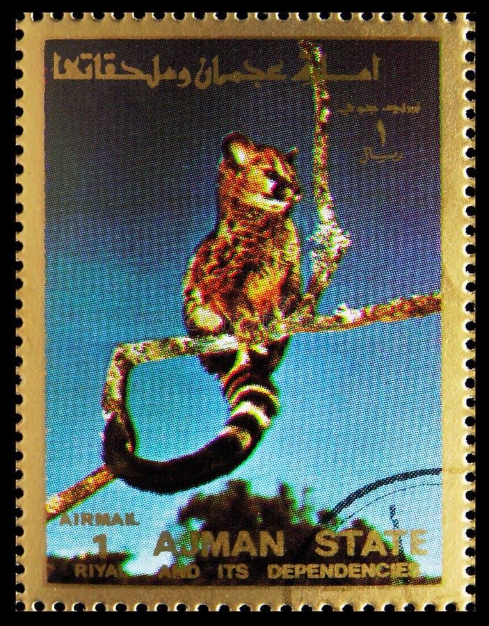 O selo postal impresso em Ajman (Emirados Árabes Unidos) mostra Animal, Mammals, large format serie, por volta de 1973 fotografia de stock royalty free