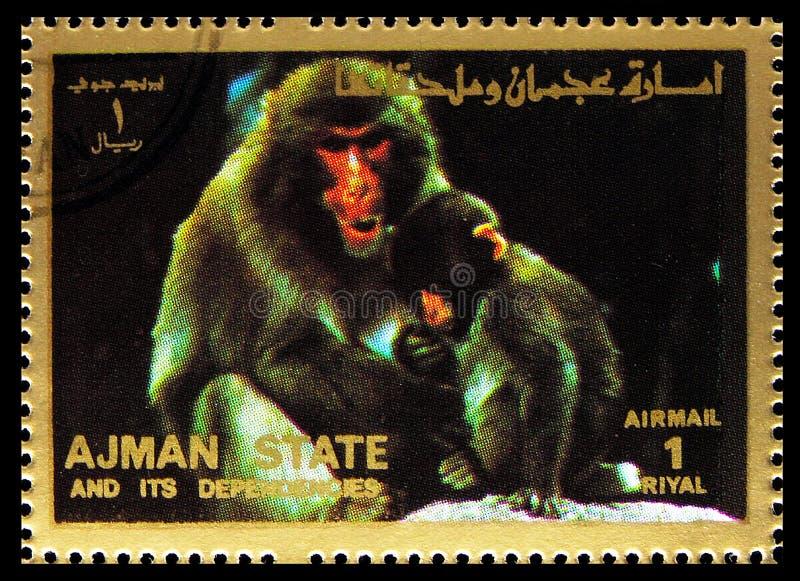 O selo postal impresso em Ajman (Emirados Árabes Unidos) mostra Macacos, Mamíferos, série grande, cerca de 1973 fotos de stock royalty free