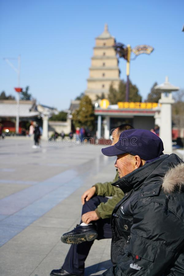 O ` selvagem grande do pagode Xi do ganso imagens de stock royalty free