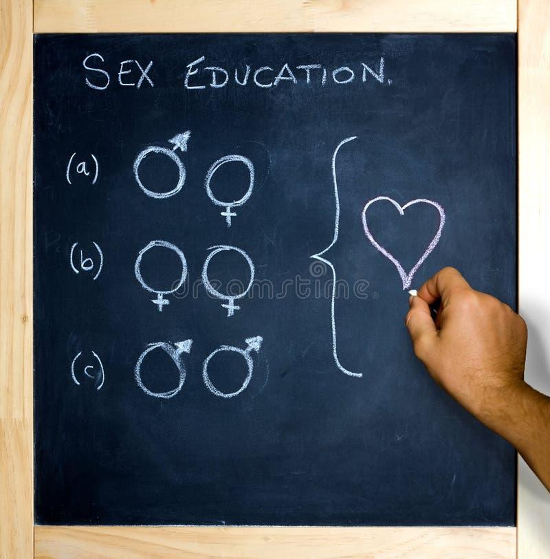 O sexo misturado acopla a instrução ilustração royalty free