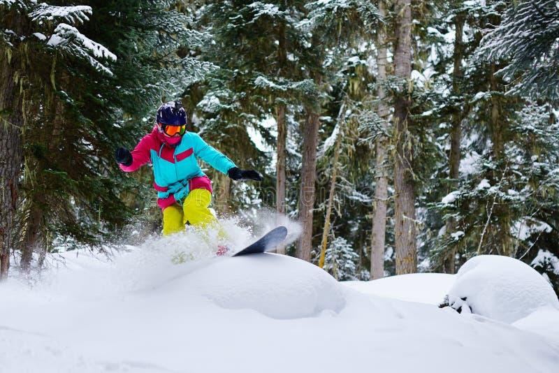 O snowboarder da menina monta o freeride na neve do pó na floresta fotografia de stock