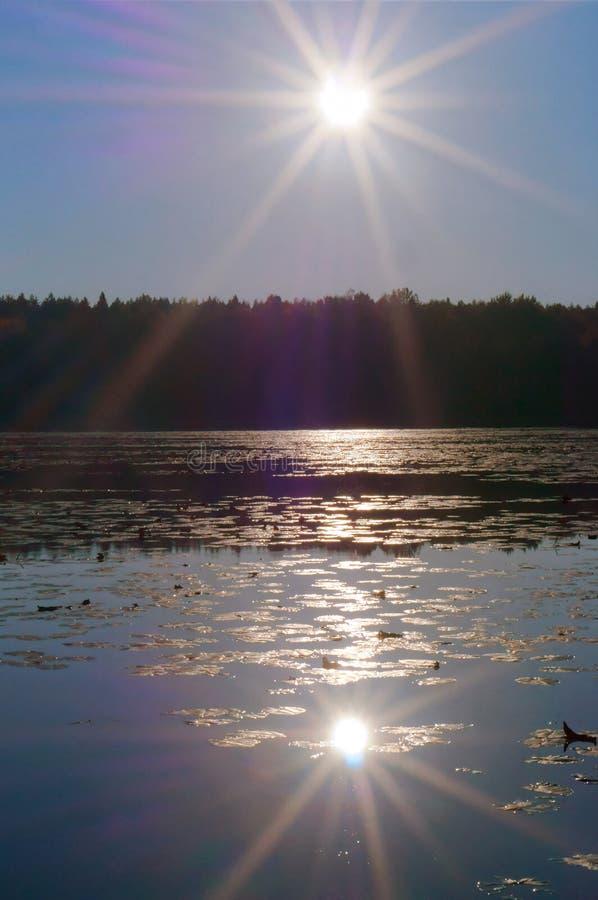 O sol é refletido na lagoa, o por do sol no lago foto de stock