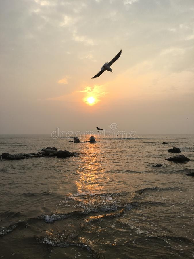 O sol aumenta sobre o mar fotografia de stock royalty free