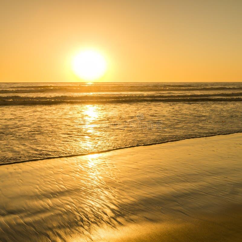 O sol brilhante de Califórnia foto de stock