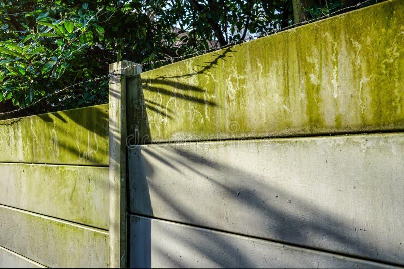 O sol da manhã brilha na cerca feita fora das placas concretas, do verde das algas feitas chuva, e do arame farpado na parte supe fotos de stock royalty free