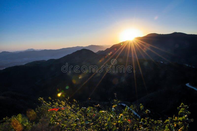 O sol de ajuste em montes da fragrância foto de stock royalty free