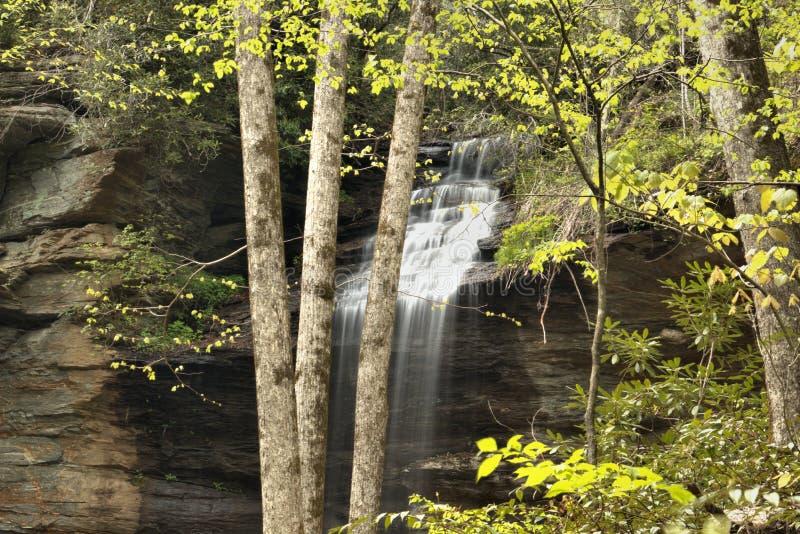 O som de quedas da água está relaxando assim fotos de stock royalty free