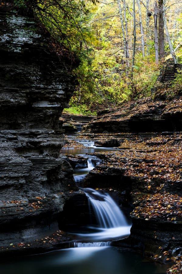 O soro de leite coalhado cai parque estadual - Autumn Waterfall - Ithaca, New York imagem de stock royalty free