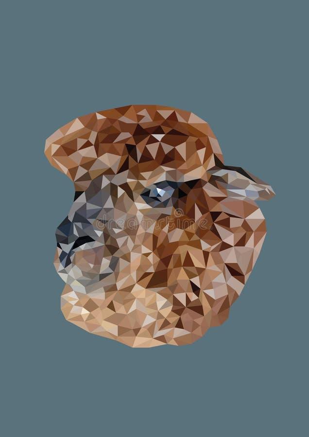 O sumário da cabeça da alpaca disparou no baixo vetor poli imagens de stock royalty free