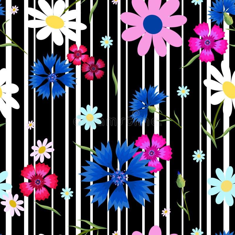 O sumário floresce as centáureas stripes-01 ilustração do vetor