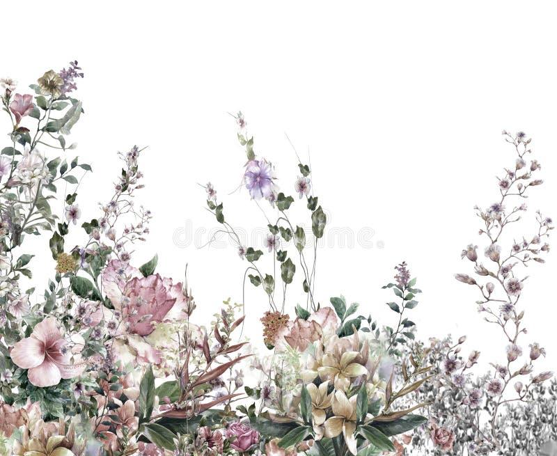 O sumário floresce a pintura da aquarela Flores coloridos da mola ilustração royalty free