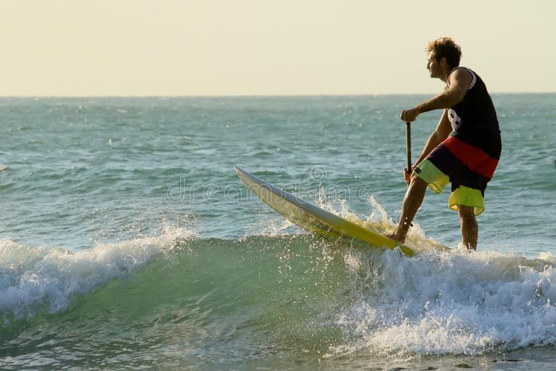 O SUP levanta-se e rema-se surfar imagens de stock royalty free