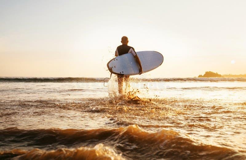 O surfista corre com a prancha para o tempo do por do sol das ondas de oceano Ta fotografia de stock royalty free