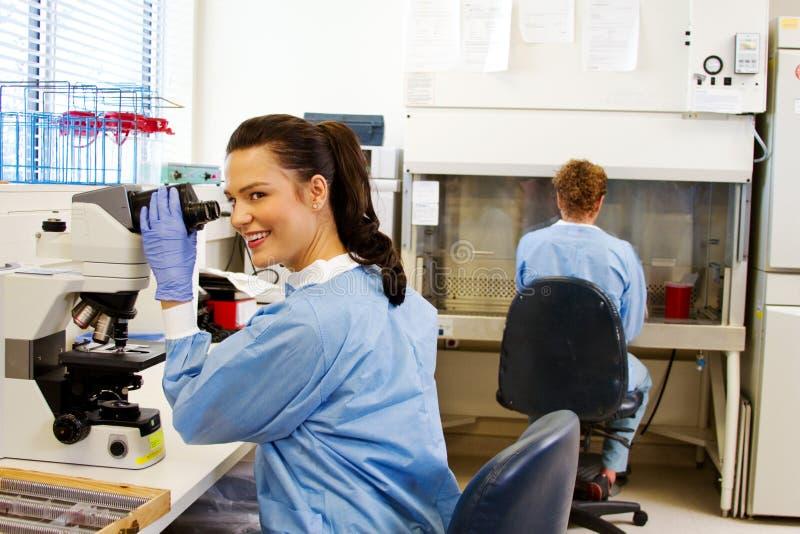 O técnico de laboratório olha acima do microscópio foto de stock royalty free