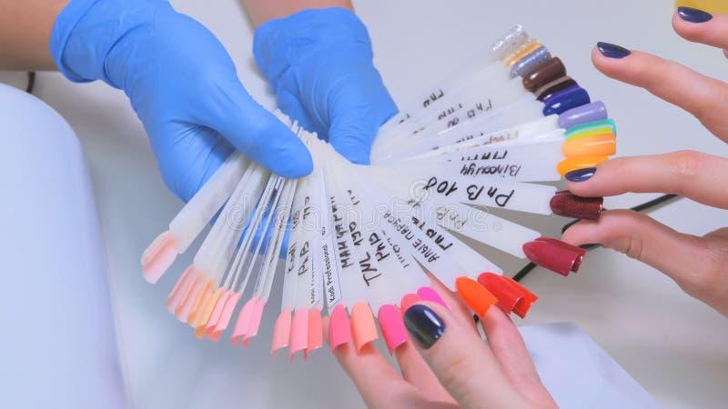O técnico do prego mostra a paleta de cores de serviços do prego no salão de beleza imagens de stock royalty free