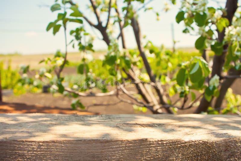 O tampo da mesa de madeira vazio da prancha com o bokeh do fundo da natureza do verde do parque do borr?o claro, zomba acima para foto de stock royalty free