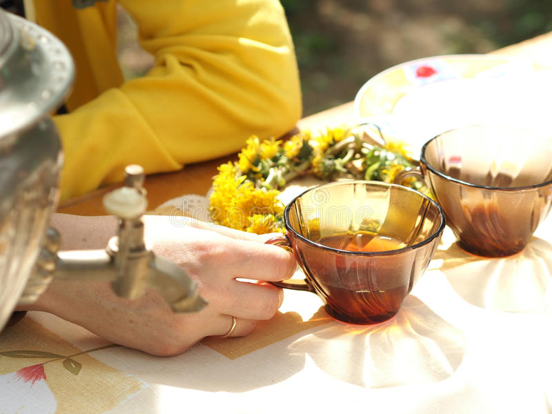 O tea party fora na primavera imagens de stock royalty free