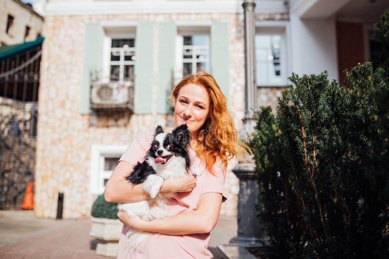 O tema é a amizade do homem e do animal Mulher caucasiano do cabelo vermelho novo bonito que guarda uma raça da chihuahua do cão  imagem de stock royalty free