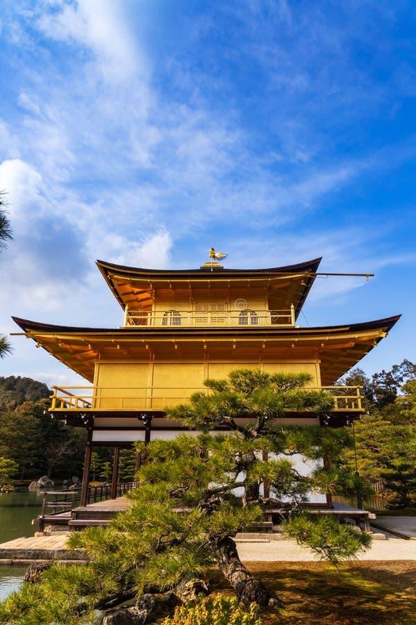 O templo dourado do templo de Kinkakuji em Kyoto, Japão Opinião contrária vertical do mergulho imagens de stock royalty free