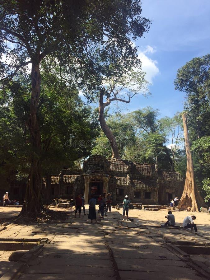 O templo na emenda colhe a província, Camboja imagens de stock royalty free