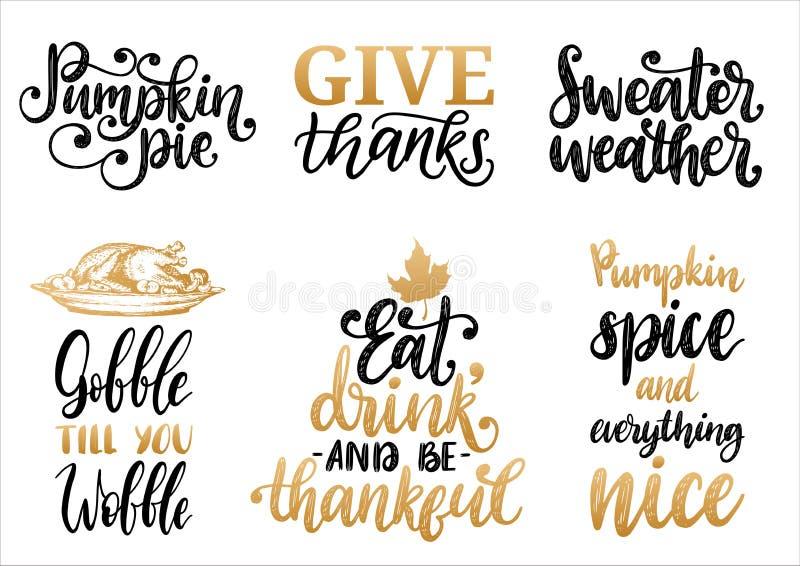 O tempo da camiseta, dá os agradecimentos, o tarte de abóbora etc. , vector grupo escrito à mão da caligrafia Ilustrações tiradas ilustração do vetor