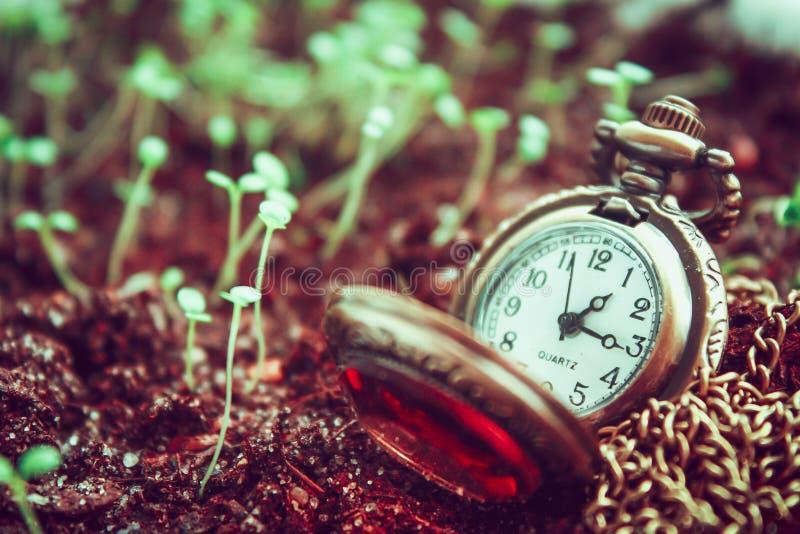 O tempo vai perto imagens de stock royalty free