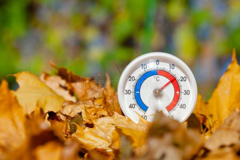 O termômetro exterior nas folhas de bordo douradas mostra o temperatur morno fotos de stock royalty free