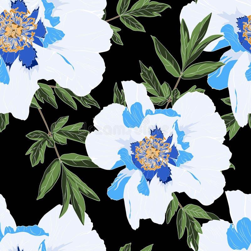 O teste padrão branco azul delicado do jardim das férias de verão da peônia floresce Rosas, peônia, anêmonas e eucalipto, planta  ilustração royalty free