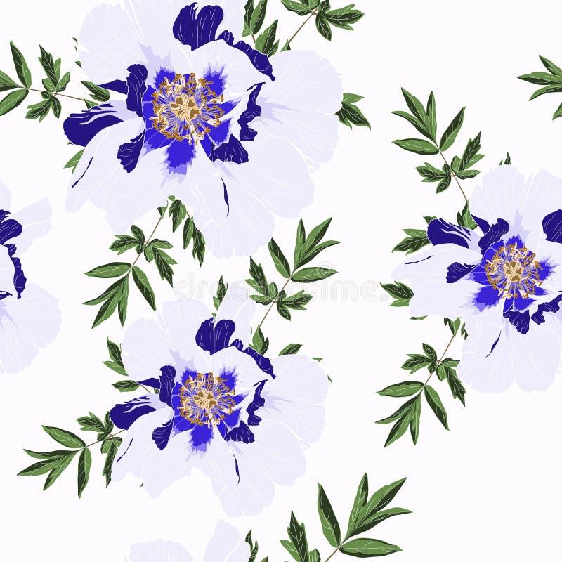 O teste padrão branco azul delicado do jardim das férias de verão da peônia floresce Rosas, peônia, anêmonas e eucalipto, planta  ilustração do vetor