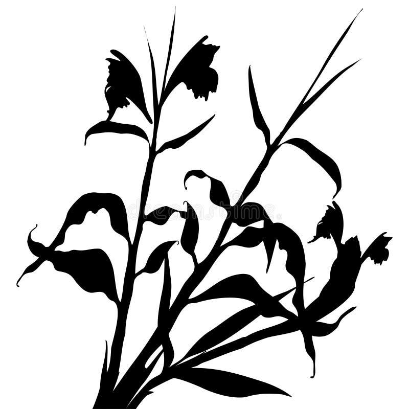 O teste padrão com as folhas tropicais pretas e as flores mostram em silhueta a sombra isolada no fundo branco Matéria têxtil da  ilustração do vetor