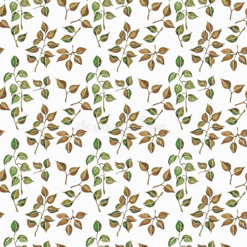 O teste padrão floral sem emenda com aquarela ramifica com folhas, mão tirada isolada em um fundo branco ilustração stock