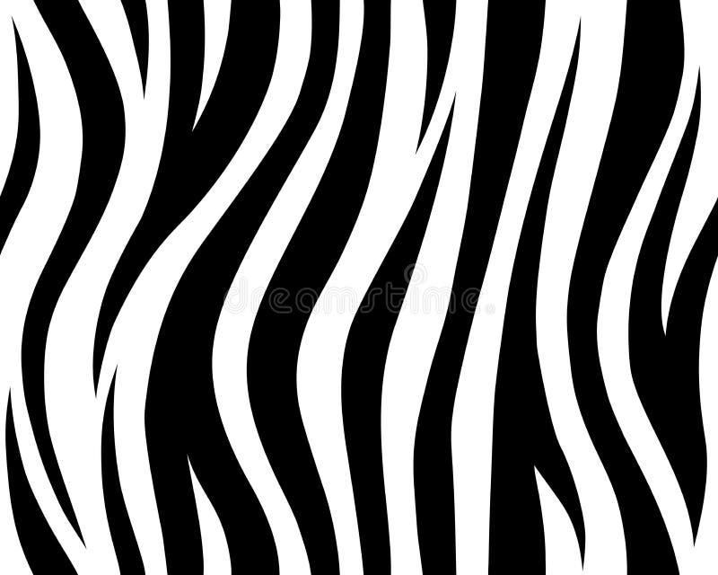 O teste padrão sem emenda branco e preto da pele animal do sumário do safari repetiu Tira da selva do vetor Tigre branco ilustração royalty free