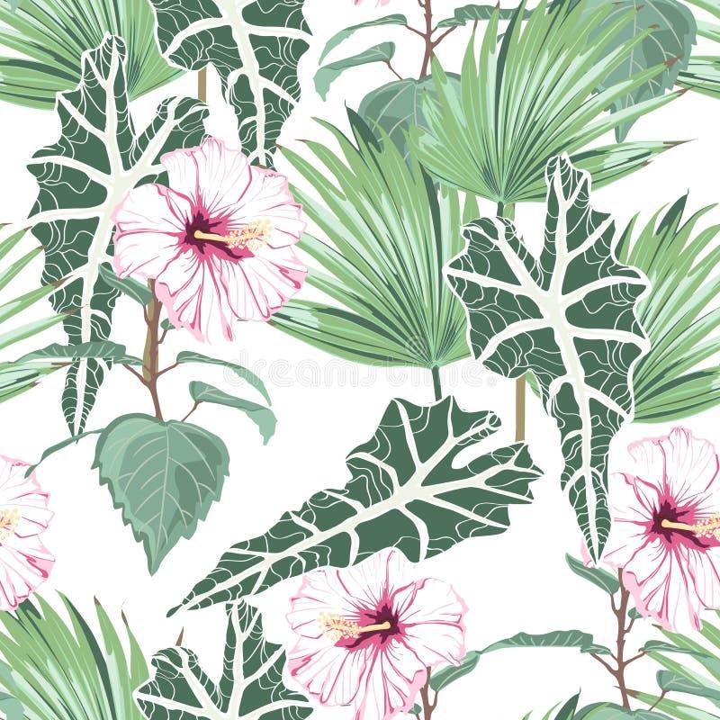 O teste padrão sem emenda com folhas tropicais e o hibiscus cor-de-rosa do paraíso floresce ilustração royalty free